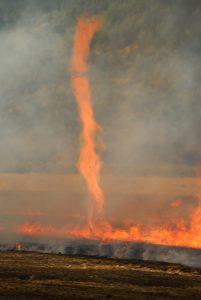 A fire storm.