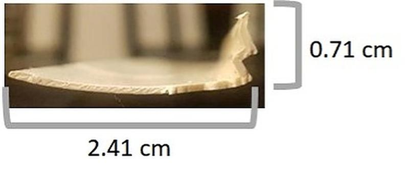 Thumbnail of the uploaded file named window bead.jpg